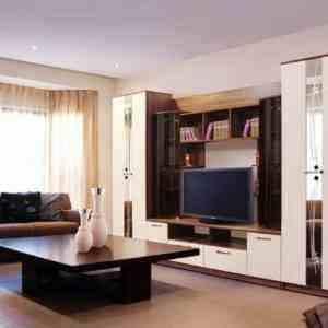 гостиная с двумя вместительными шкафами недорогая